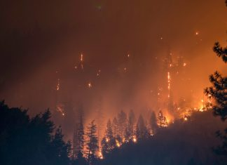 Moving to Wildfire Country: Here's What You Need to Know