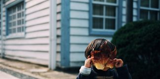 what-to-do-with-the-kids-over-winter-break-shuto-araki-279766-unsplash