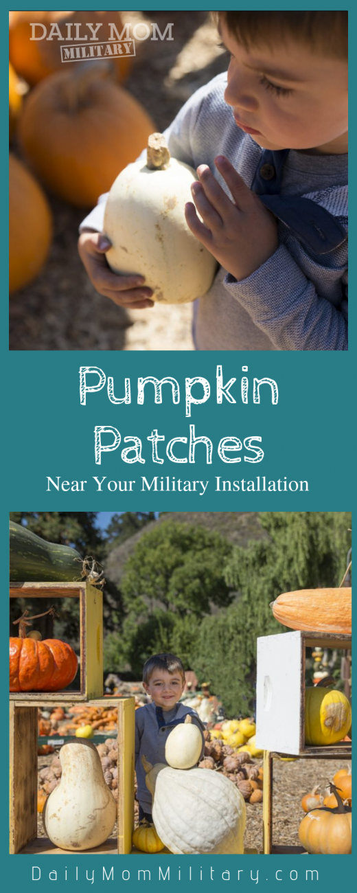 Pumpkin Patches near Military Installations