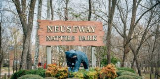 neusway nature park, things to do in eastern nc