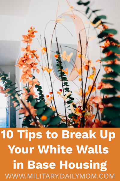 10 Tips To Break Up The White-wall Monotony In Base Housing