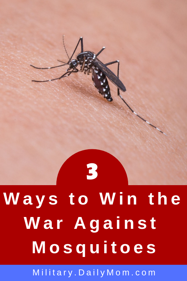 3 ways to win the war against mosquitoes