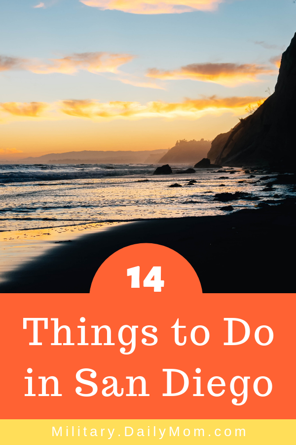 14 things to do in san diego