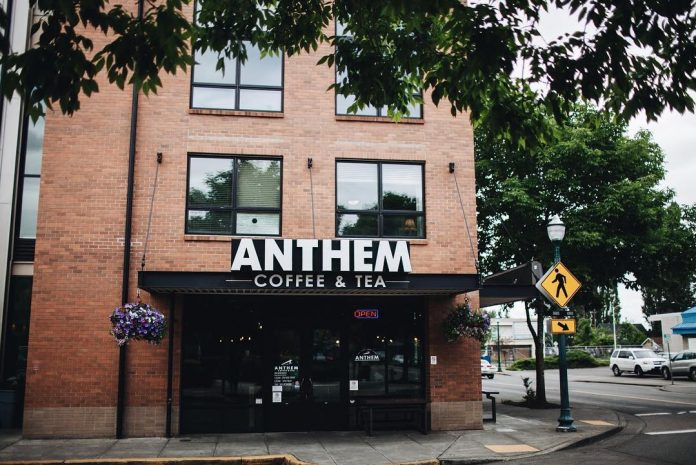 7 kid friendly coffee shops in south puget sound anthem coffee company2