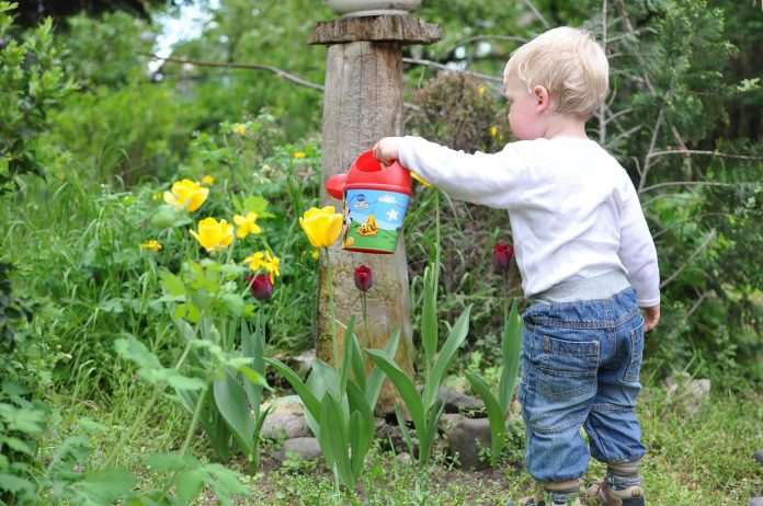 how to successfully garden with kids child 559407 1280