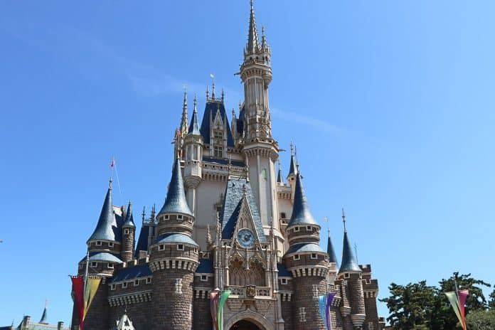 Why You Should Use A Disney Vacation Planner